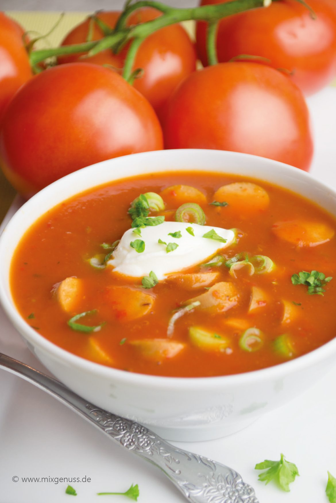 Tomaten-Paprika-Suppe